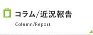 コラム/近況報告